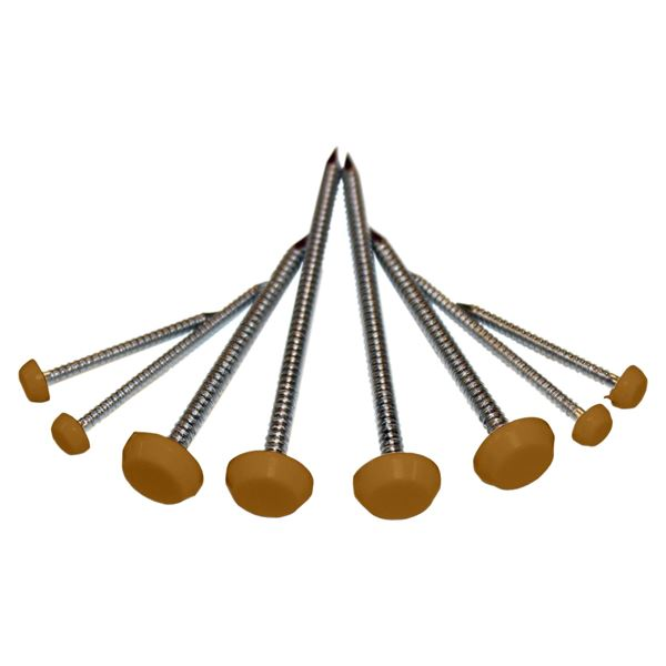 Picture of 40mm POLYTOP PINS (OAK)